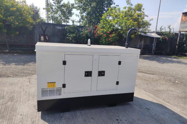 Perkins-Generator-India